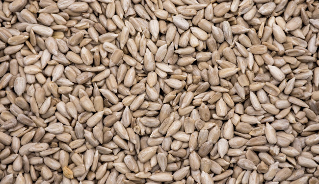 High Oleic Sunflower Seed Kernels | NikSot